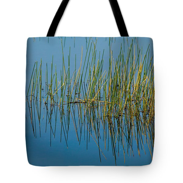 Still Water And Grasses Tote Bag by Rich Franco