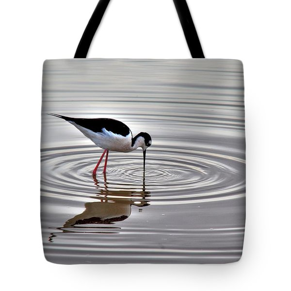 Tote Bag featuring the photograph Black-necked Stilt by Tam Ryan