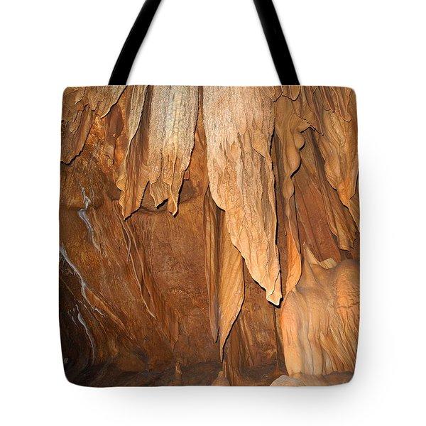Tote Bag featuring the photograph Stone Fold Elegance by Lynda Lehmann