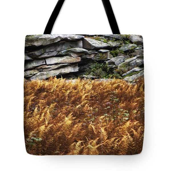 Stone Wall And Fern Tote Bag