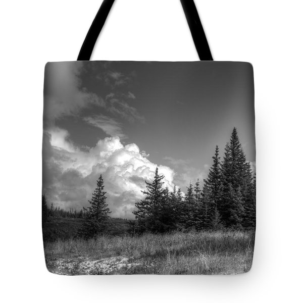 Storm Clouds Building Tote Bag by Michele Cornelius