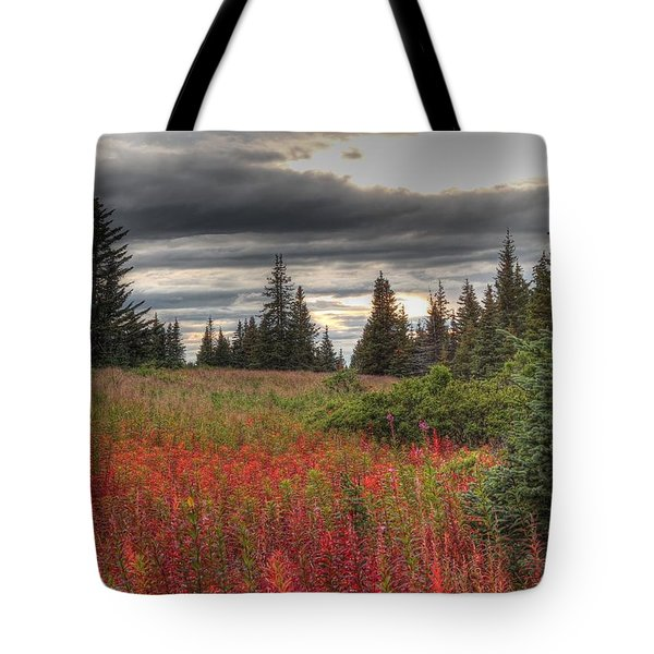 Storm Clouds In Fall Tote Bag by Michele Cornelius