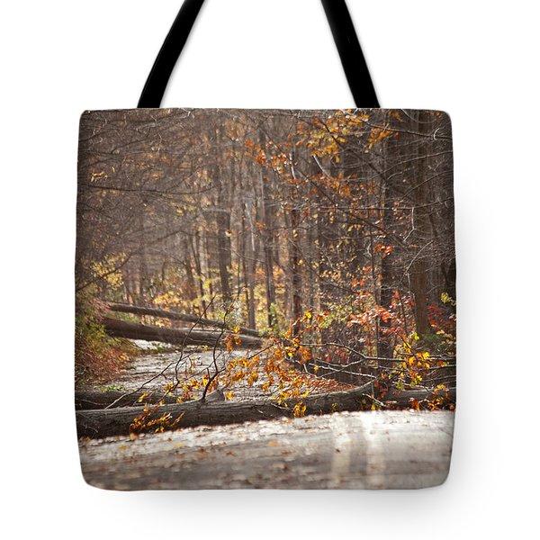 Stormy Autumn Tote Bag by Karol Livote