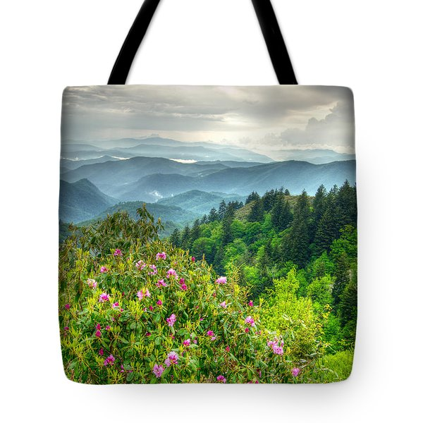Stormy Spring Skies Tote Bag