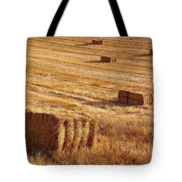 Straw Field Tote Bag