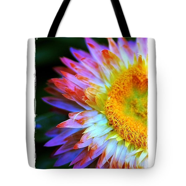Strawflower Tote Bag by Judi Bagwell