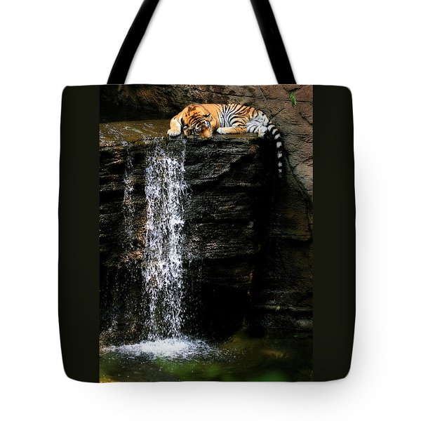 Strength At Rest Tote Bag