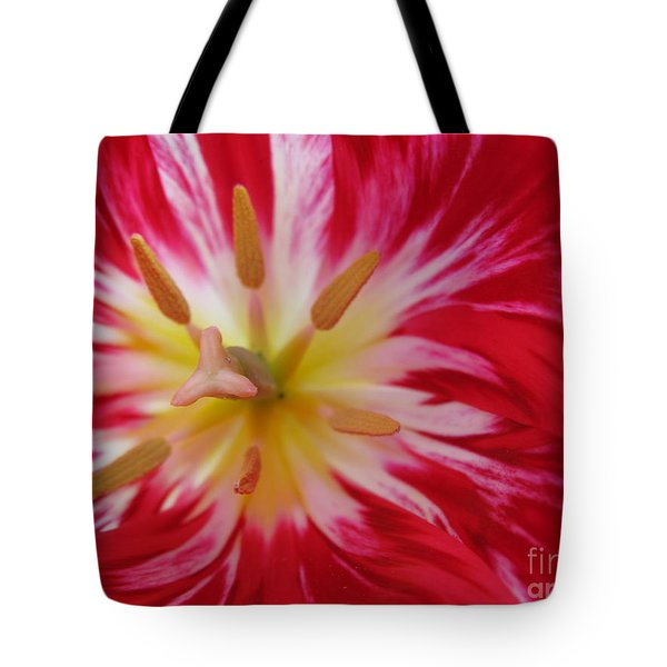 Striped Flaming Tulips. Hot Pink Rio Carnival Tote Bag