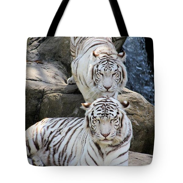 Stripes Tote Bag by Elizabeth Budd