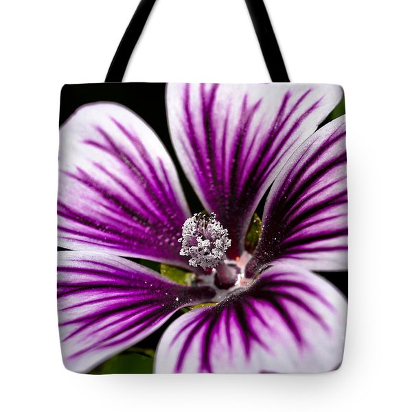 Stripped Blossom Tote Bag by Larry Carr