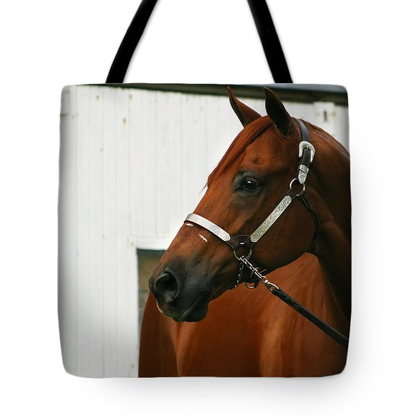 Stud Tote Bag