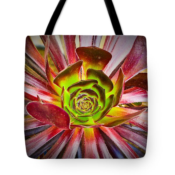 Succulent Aeonium Tote Bag