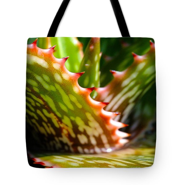 Succulents With Spines Tote Bag by Judi Bagwell