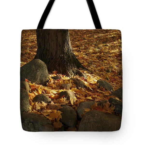 Sugar Maple Acer Saccharum Tree Tote Bag