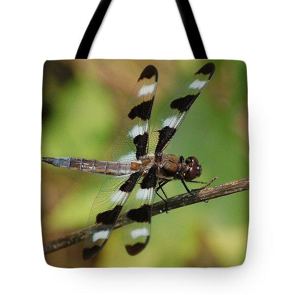 Summer Dragonfly Tote Bag
