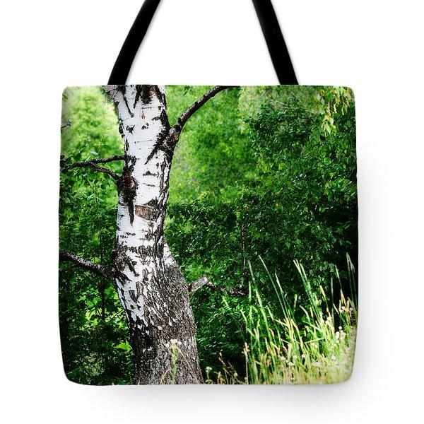 Summer Memory Tote Bag by Jenny Rainbow