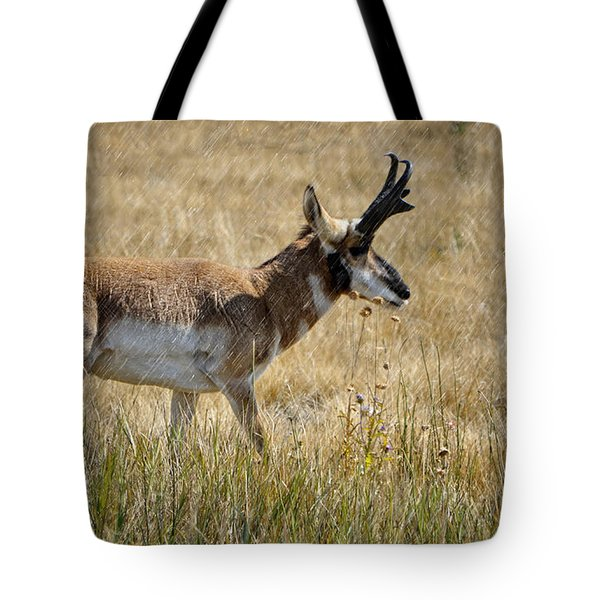 Summer Pronghorn Rain Tote Bag by Donna Greene