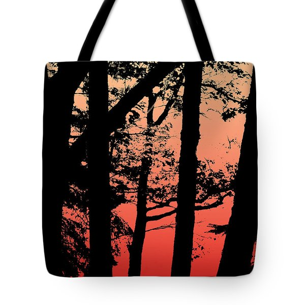 Summer Sunset Tote Bag by Lauren Radke