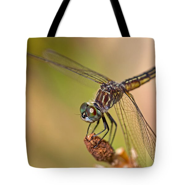 Summer Visitor Tote Bag by Karol Livote