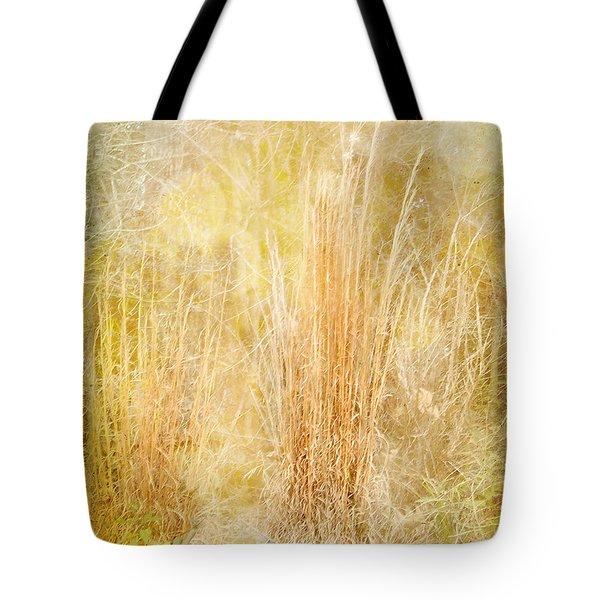 Summer's End Tote Bag by Judi Bagwell
