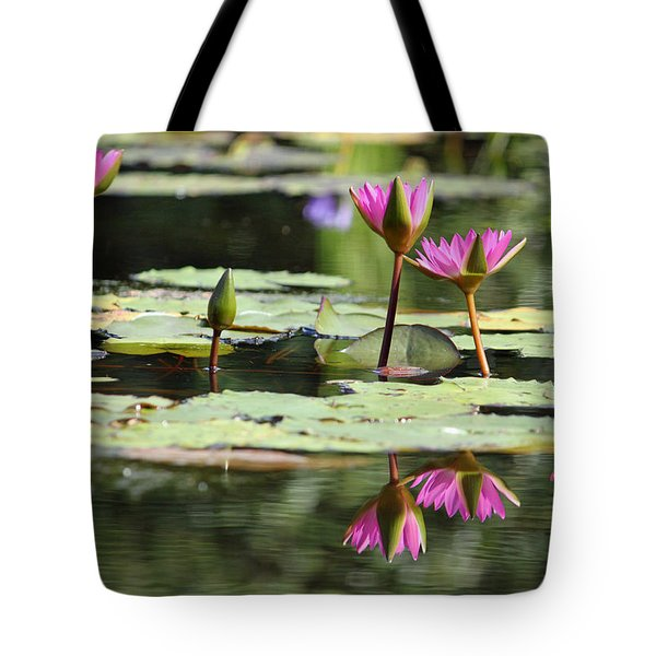Summertime Magic Tote Bag by Suzanne Gaff