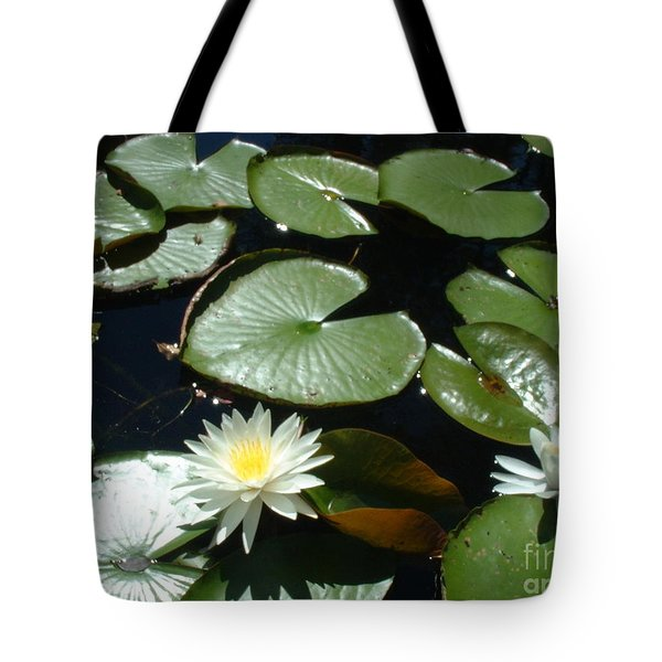 Sun Lovers Tote Bag by Mark Robbins