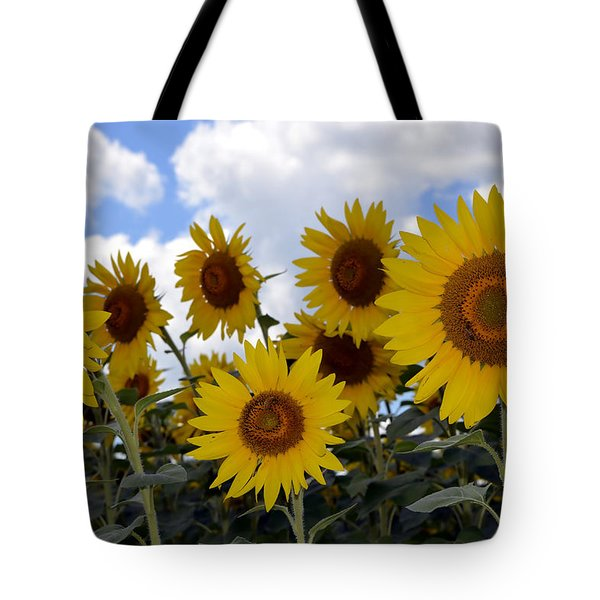 Sun Lovers Tote Bag