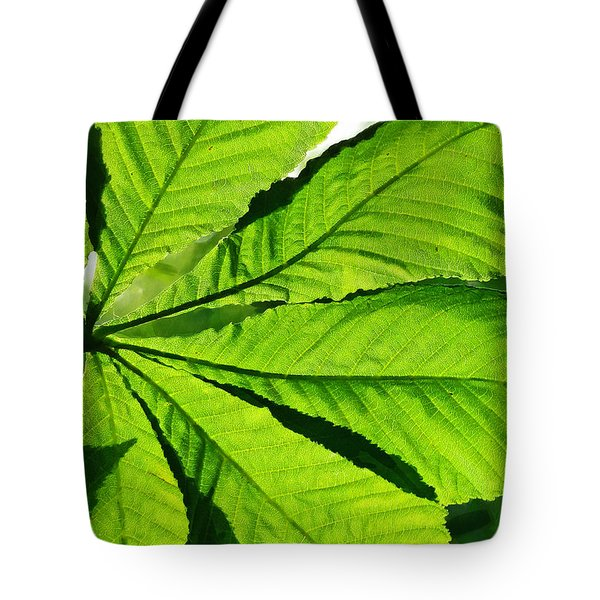 Tote Bag featuring the photograph Sun On A Horse Chestnut Leaf by Steve Taylor