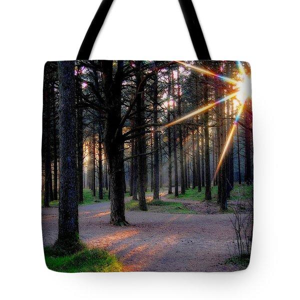 Sun Rays Tote Bag by Sonya Kanelstrand