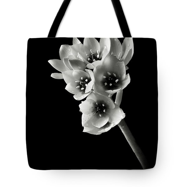 Tote Bag featuring the photograph Sun Star In Black And White by Endre Balogh