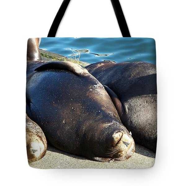 Tote Bag featuring the photograph Sunbathing Sea Lions by Chalet Roome-Rigdon