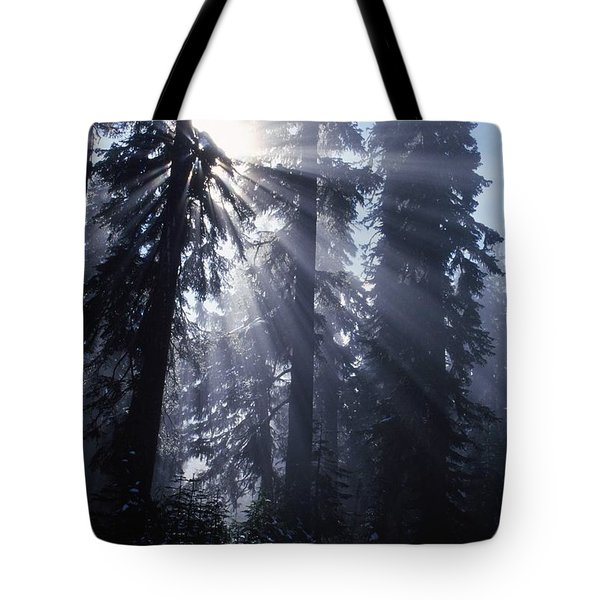 Sunbeams Through Pine Trees Tote Bag by Natural Selection Craig Tuttle