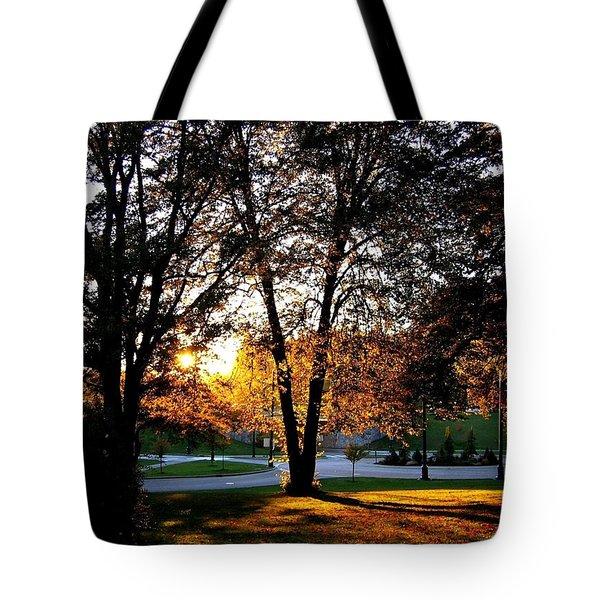 Sundown In Stanley Park Tote Bag by Will Borden