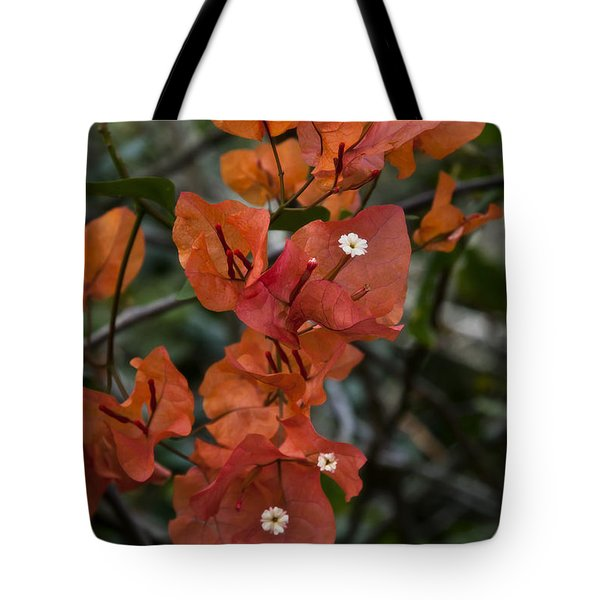 Sundown Orange Tote Bag by Steven Sparks