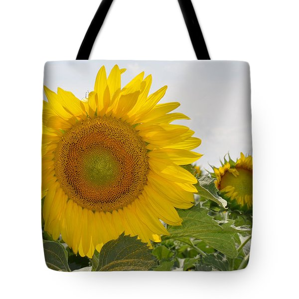Sunflower Tote Bag by Cheryl McClure