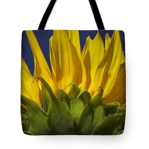 Sunflower Tote Bag by Garry Gay