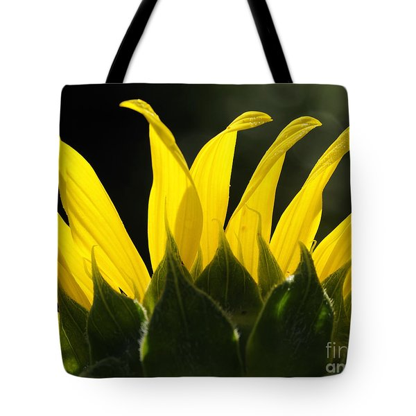 Sunflower Greeting The Morning Tote Bag