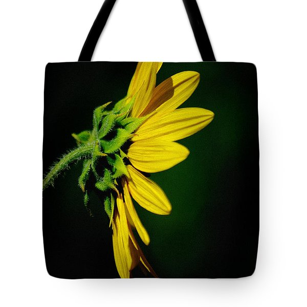Tote Bag featuring the photograph Sunflower In Profile by Vicki Pelham