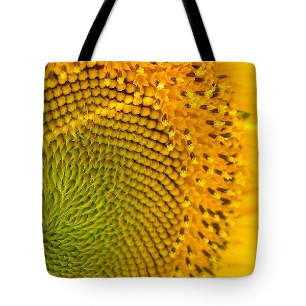 Sunflower Study 1 Tote Bag