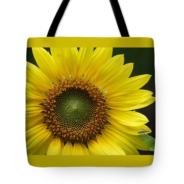 Sunflower With Insect Tote Bag by Daniel Reed