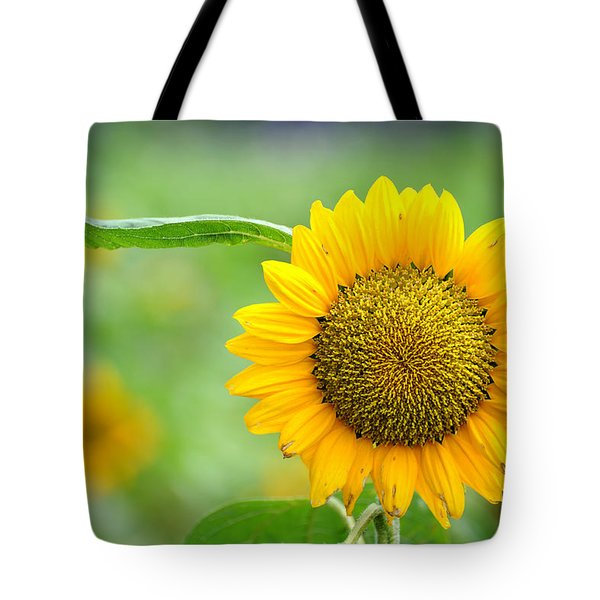 Tote Bag featuring the photograph Sunflower by Yew Kwang