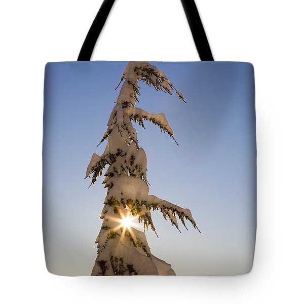 Sunlight Through Snow-covered Tree Tote Bag by Craig Tuttle