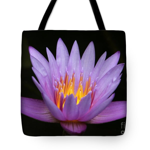 Sunlit Water Lily Tote Bag by Sabrina L Ryan