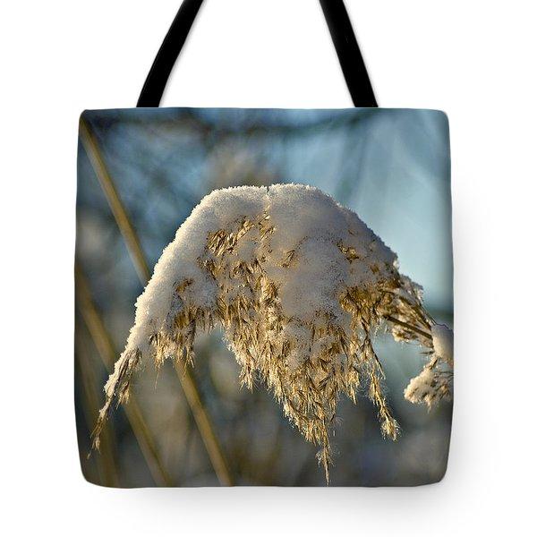 Sunny Day Snow Fall On The Bull Rushes Tote Bag by LeeAnn McLaneGoetz McLaneGoetzStudioLLCcom