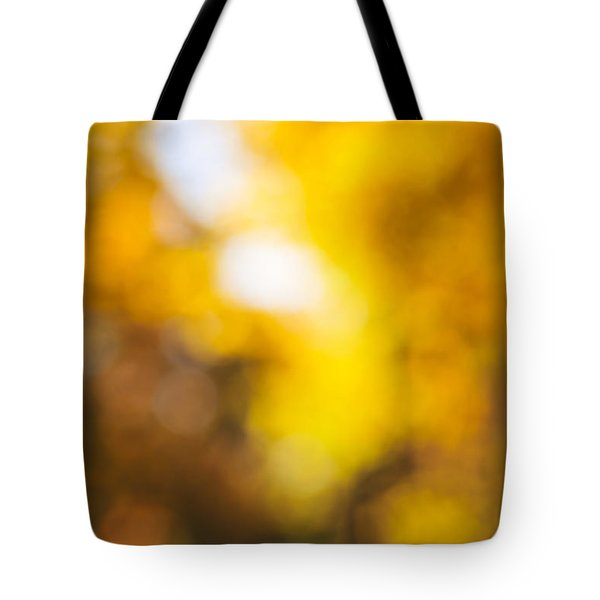 Sunny Fall Forest Tote Bag by Elena Elisseeva