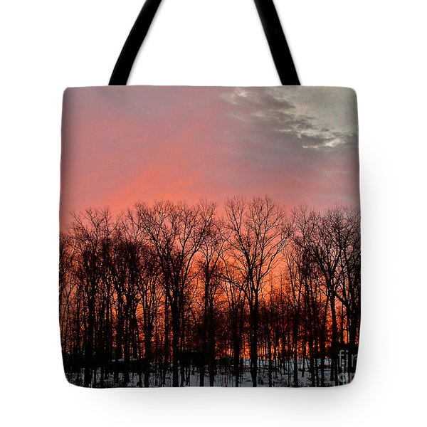 Tote Bag featuring the photograph Sunrise Behind The Trees by Mark Dodd