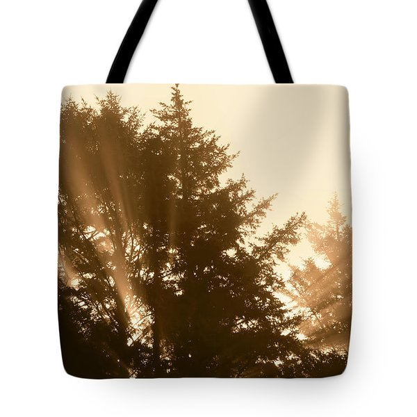 Sunrise In Sepia Tote Bag