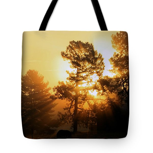 Sunrise Tote Bag by Karen Harrison