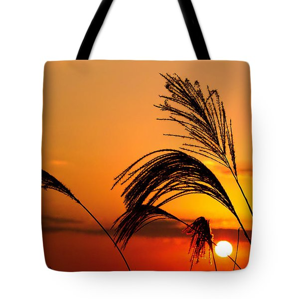Sunset And Pampus Tote Bag by Jocelyn Kahawai