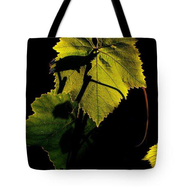 Sunset In My Garden Tote Bag by Eena Bo